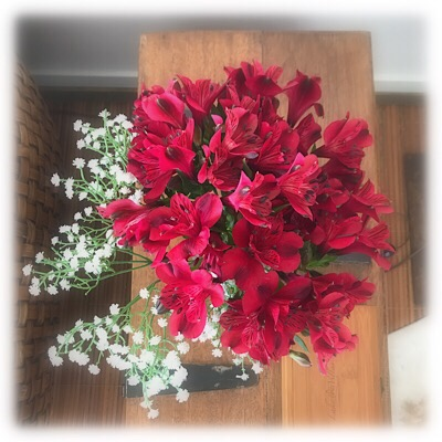 foto com flores vermelhas